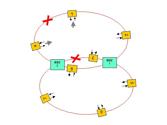 Optical System - Figure 1 - Two interconnected ring network layout
