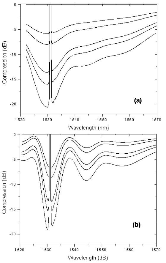 Optical System - Figure 6 - Compression caused by saturation in (a) homogeneous and (b) inhomogeneous cases
